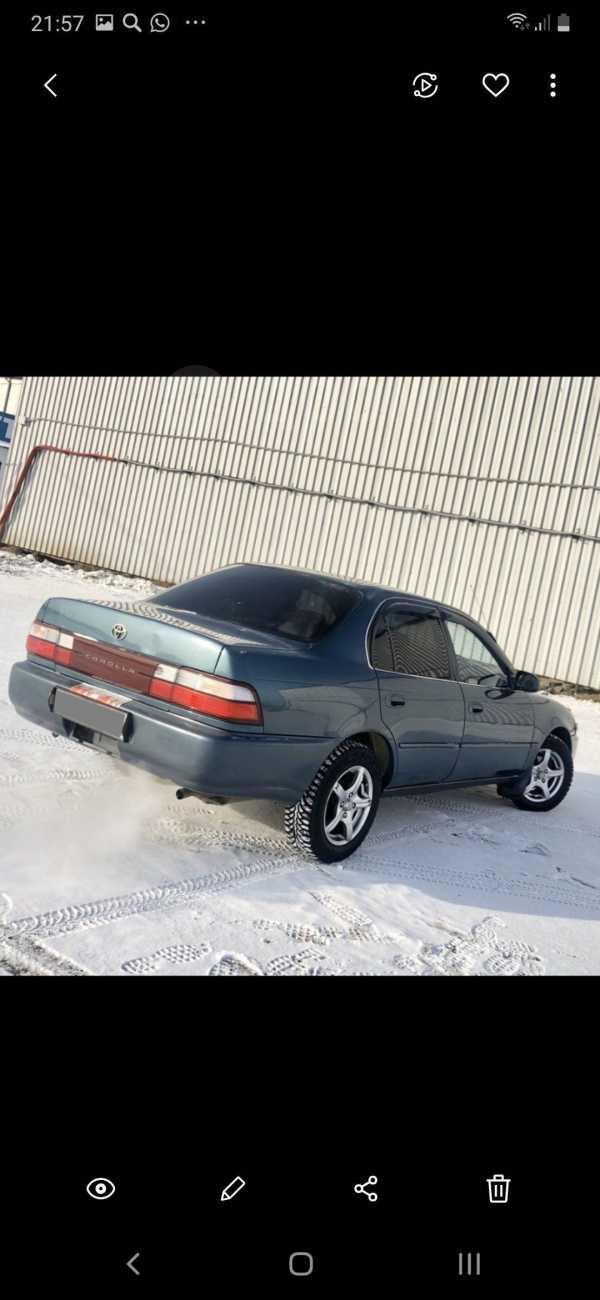 Toyota Corolla, 1993 год, 195 000 руб.