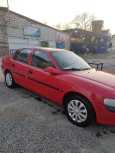 Opel Vectra, 1998 год, 250 000 руб.