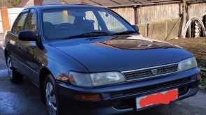 Егорьевск Corolla 1993