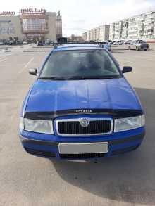 Клинцы Octavia 2002