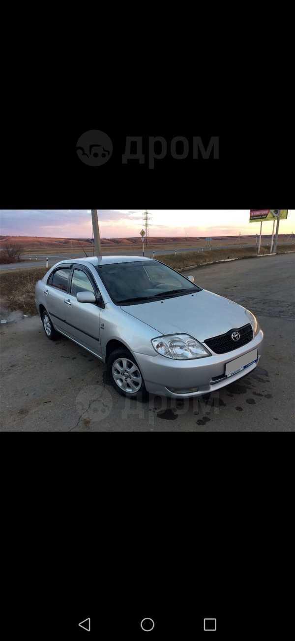 Toyota Corolla, 2003 год, 320 000 руб.