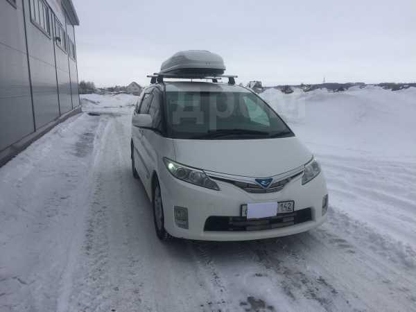 Toyota Estima, 2010 год, 1 350 000 руб.