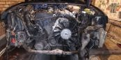 Volkswagen Passat, 2000 год, 160 000 руб.