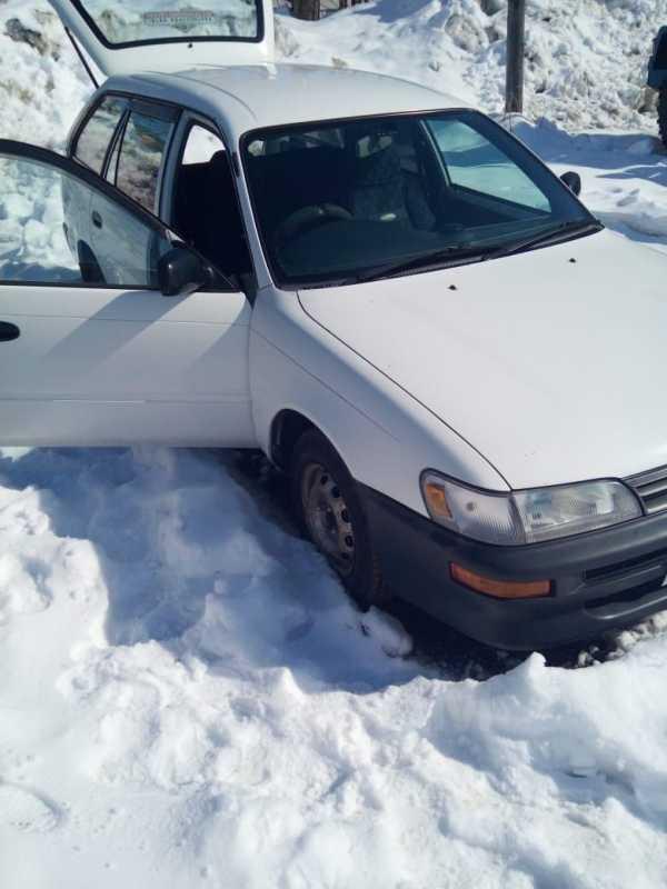 Toyota Corolla, 1999 год, 300 000 руб.