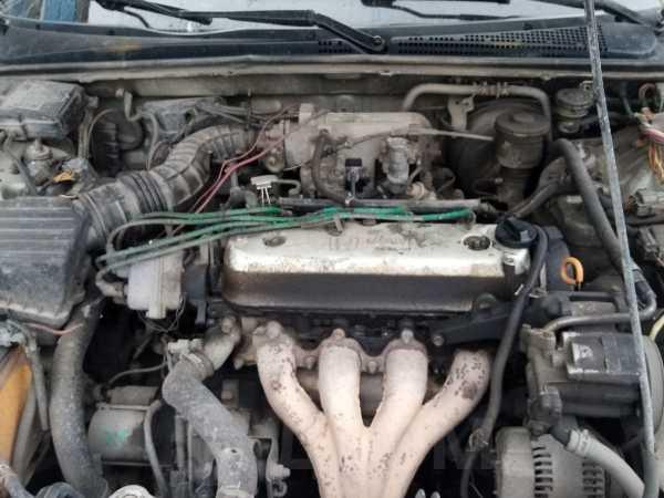Honda Accord, 1994 год, 50 000 руб.