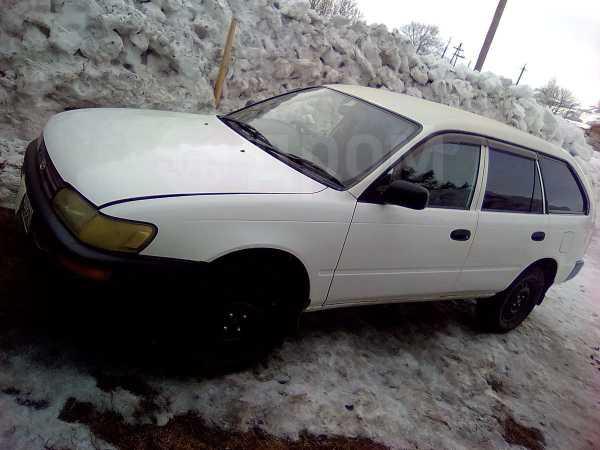 Toyota Corolla, 2000 год, 178 000 руб.