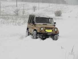 Тольятти 3151 1994