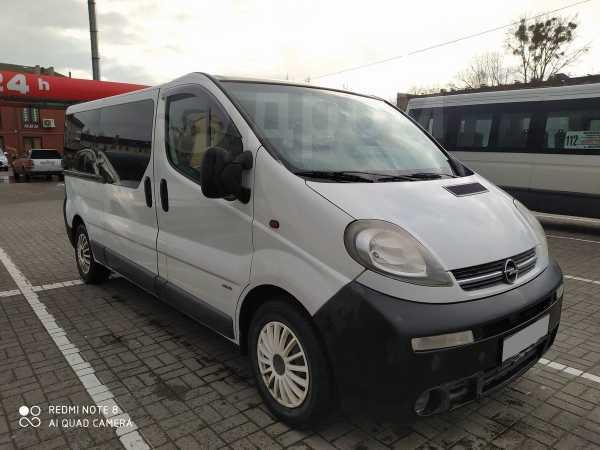Opel Vivaro, 2004 год, 430 000 руб.
