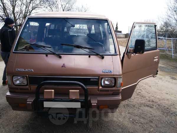 Mitsubishi Delica, 1984 год, 330 000 руб.