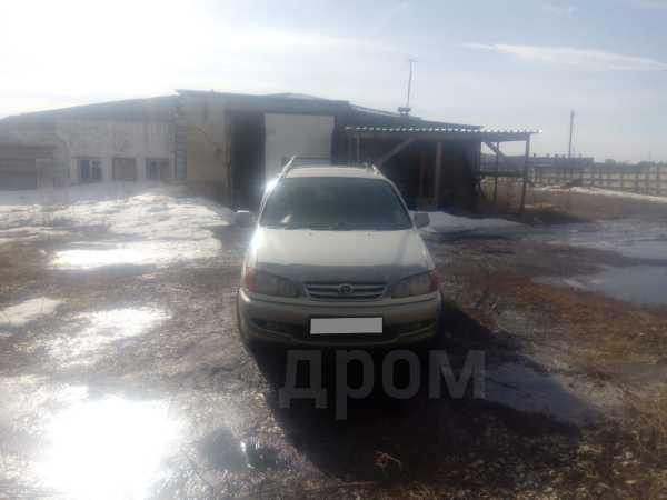 Toyota Ipsum, 2000 год, 299 000 руб.