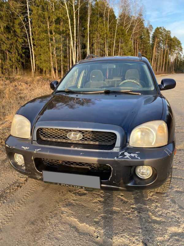 Hyundai Santa Fe, 2002 год, 140 000 руб.