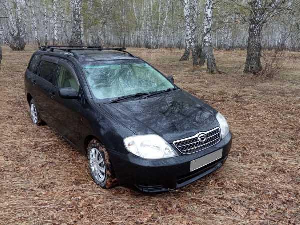 Toyota Corolla Fielder, 2002 год, 339 000 руб.