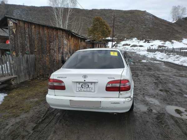 Toyota Corolla, 1998 год, 125 000 руб.
