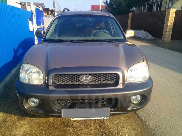 Hyundai Santa Fe, 2003 год, 375 000 руб.