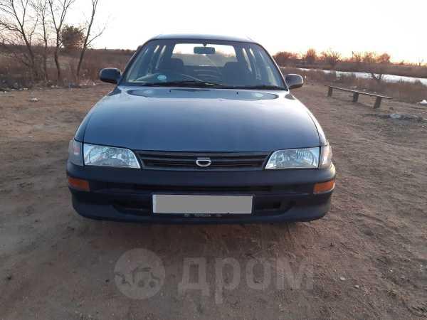Toyota Corolla, 1994 год, 143 000 руб.