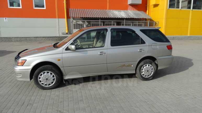 Toyota Vista Ardeo, 1998 год, 315 000 руб.