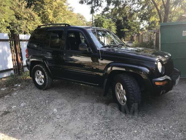 Jeep Liberty, 2002 год, 420 000 руб.