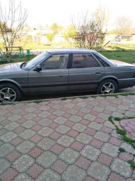 Красногвардейское 800 1989