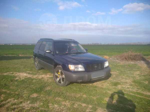 Subaru Forester, 2001 год, 330 000 руб.