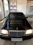 Mercedes-Benz S-Class, 1994 год, 350 000 руб.