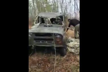 В России голодные медведи превратили в металлолом внедорожники охотников (ВИДЕО)