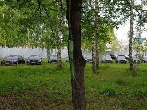 ВИДЕО: В Челябинске десятки Camry для саммитов портятся под открытым небом