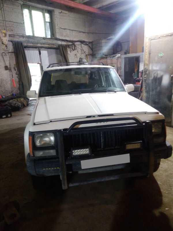 Jeep Cherokee, 1994 год, 300 000 руб.
