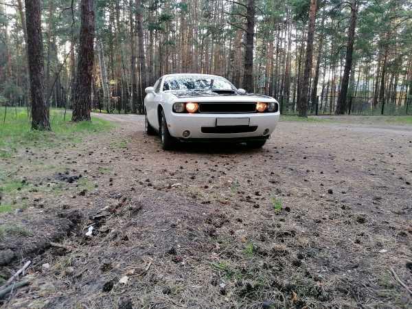 Dodge Challenger, 2010 год, 1 850 000 руб.