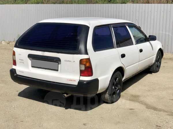 Toyota Corolla, 1999 год, 108 000 руб.