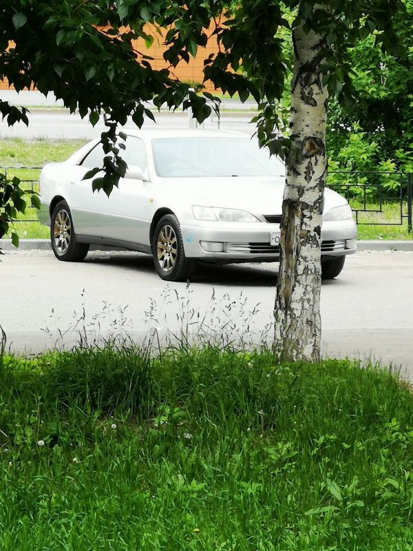 Toyota Windom, 1997 год, 245 000 руб.