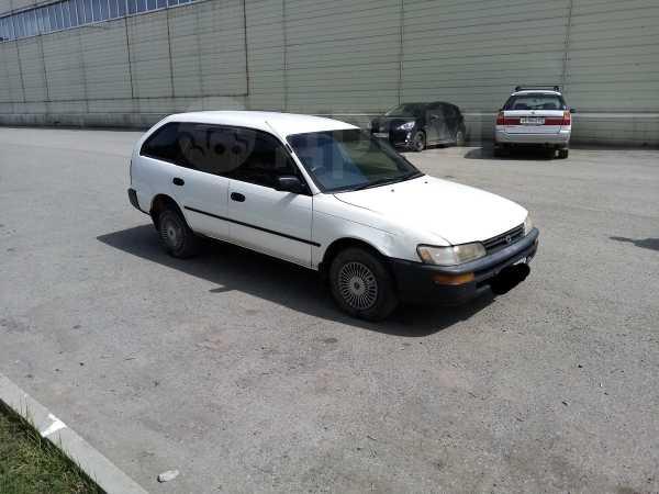 Toyota Corolla, 1997 год, 179 000 руб.