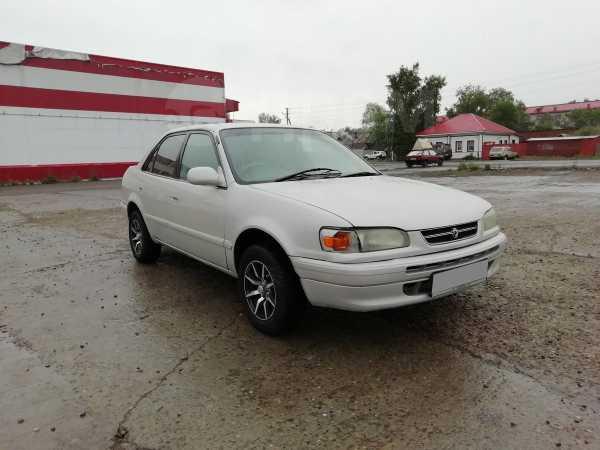 Toyota Corolla, 1996 год, 145 000 руб.
