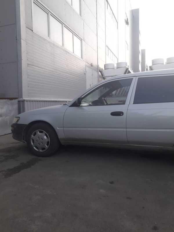 Toyota Corolla, 1995 год, 200 000 руб.