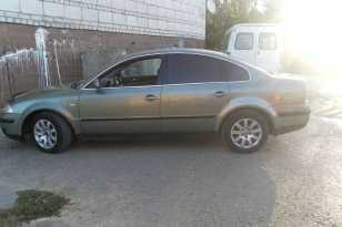 Камышин Passat 2002