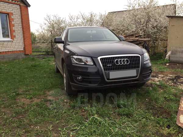 Audi Q5, 2010 год, 720 000 руб.