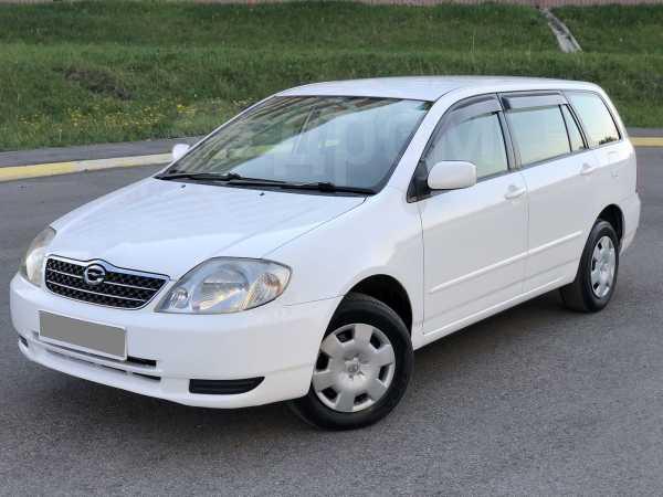 Toyota Corolla Fielder, 2001 год, 350 000 руб.