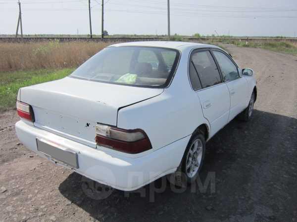 Toyota Corolla, 1995 год, 90 000 руб.