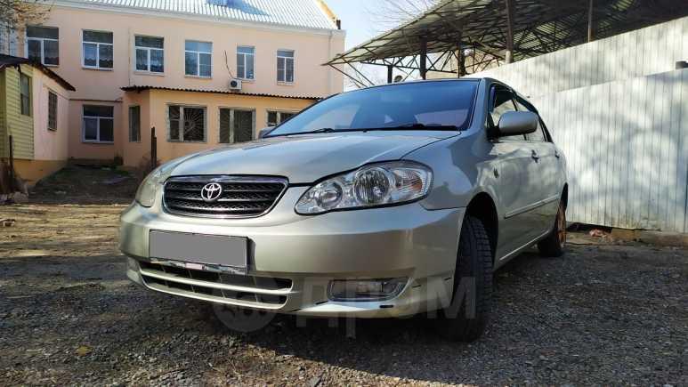 Toyota Corolla, 2004 год, 295 000 руб.