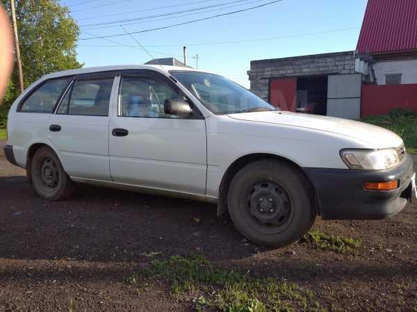 Toyota Corolla, 2000 год, 110 000 руб.