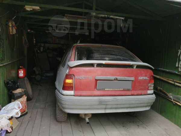 Opel Opel, 1987 год, 25 000 руб.