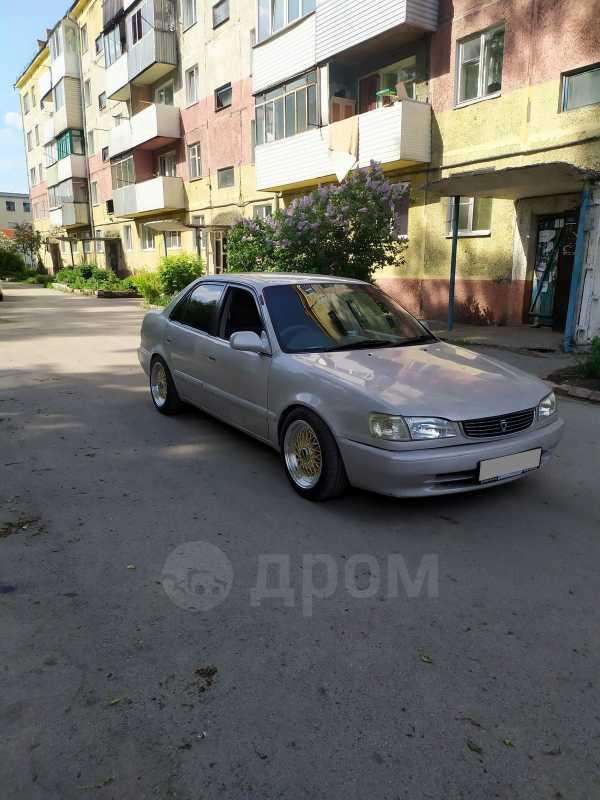 Toyota Corolla, 1997 год, 300 000 руб.