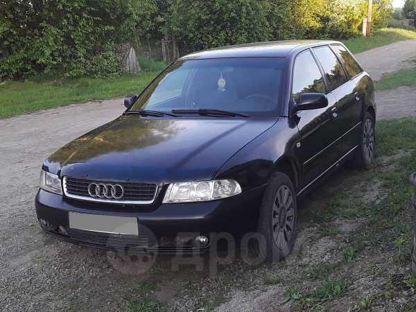 Audi A4, 2000 год, 175 000 руб.