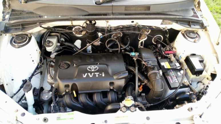 Toyota Succeed, 2003 год, 260 000 руб.