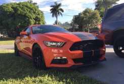 Сергиев Посад Mustang 2015