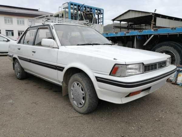 Toyota Carina, 1987 год, 79 000 руб.