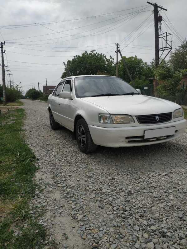 Toyota Corolla, 1999 год, 165 000 руб.