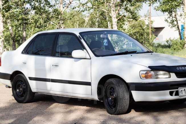 Toyota Corolla, 1995 год, 152 000 руб.