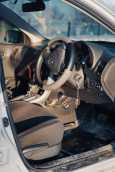 Toyota Corolla Fielder, 2010 год, 575 000 руб.