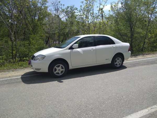 Toyota Corolla, 2002 год, 255 000 руб.