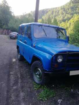 Междуреченск 3151 1993